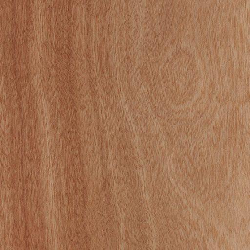 Strata Forest - Spanish Cedar